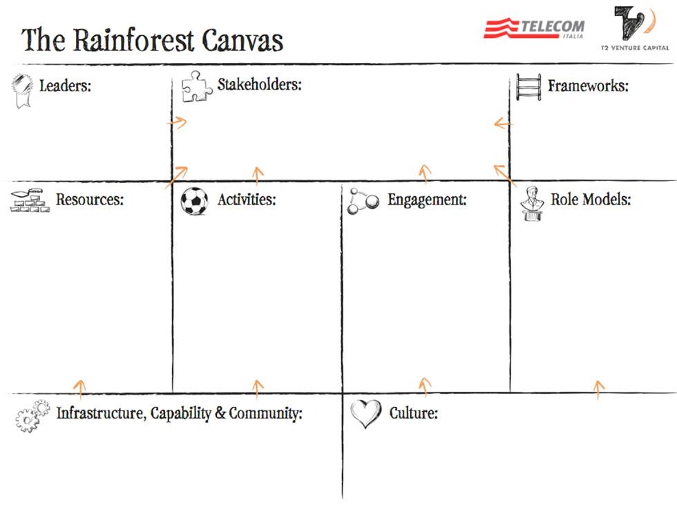 rainforest-canvas