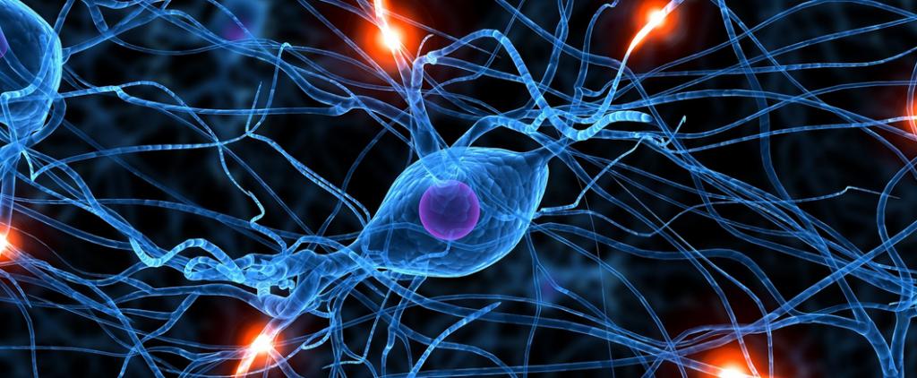 sinapses-neural