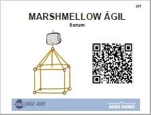 marshmellow challenge-pp